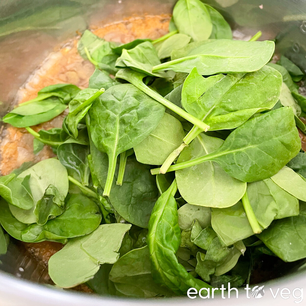 adding baby spinach to lentil soup